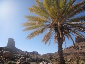Marokko-217-300x225 in Trekkingtour durch den Jebel Saghro
