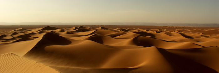 Westsahara 2008