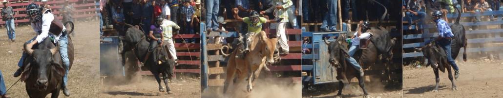 Fiestas Patronales San Miguelito 2013