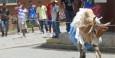 Das Stierkampffest beginnt mit dem