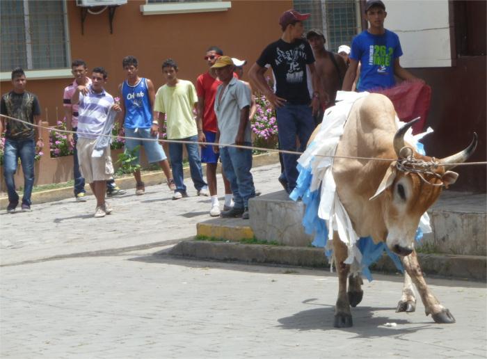 Das Stierkampffest beginnt...